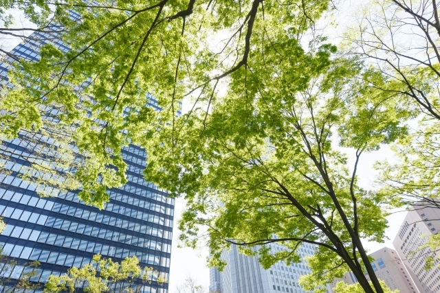 大阪クロススクエアが「本町」にある理由